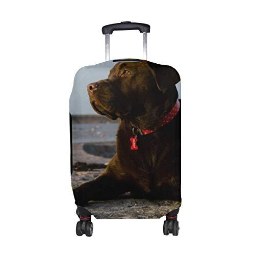 Hundelüge Farbmuster Druck Reisegepäckschutz Gepäck Kofferbezug Für 18-21 Zoll Gepäck