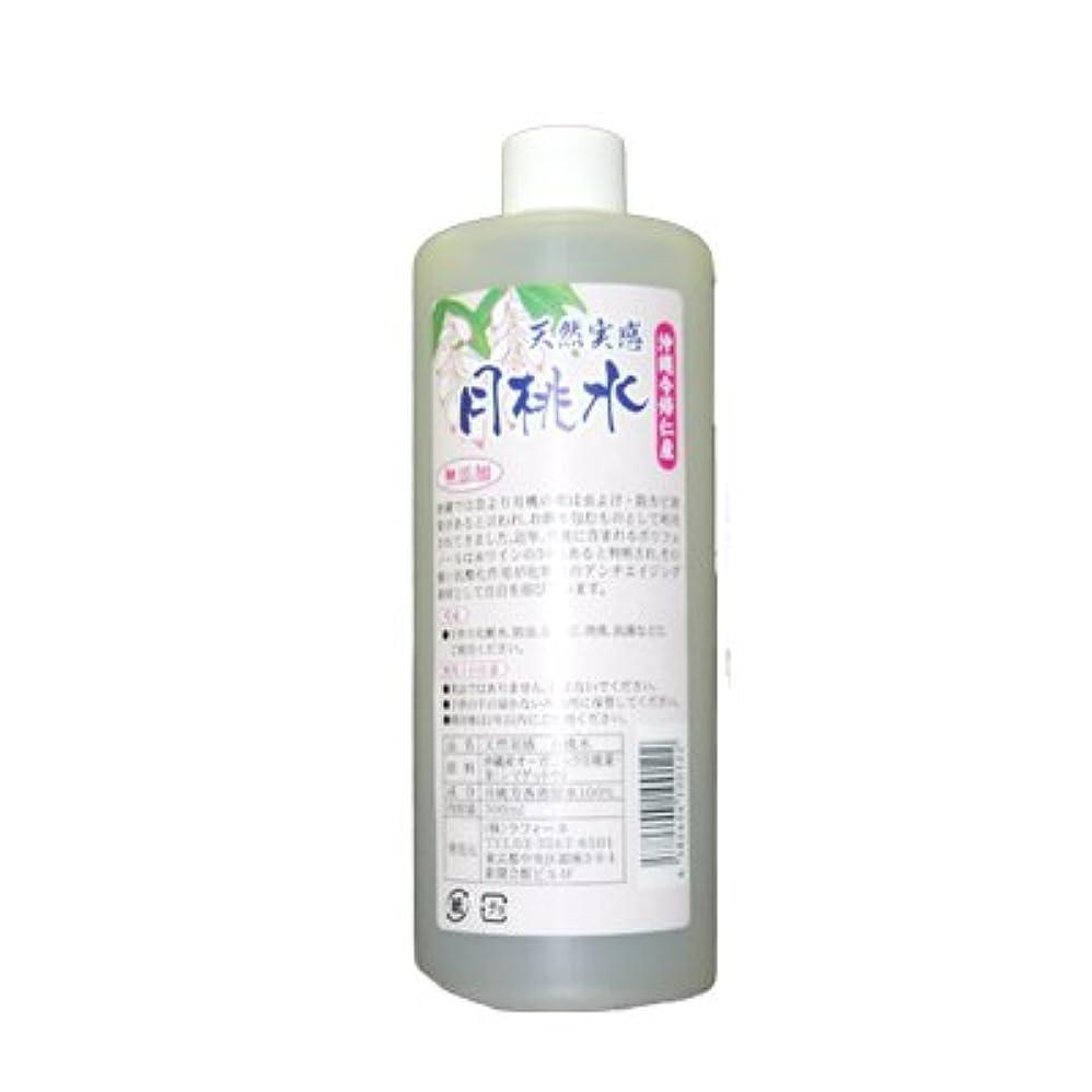 葉傾向があります包囲沖縄のオーガニック月桃を芳香蒸留した天然100%無添加の月桃水「天然実感-月桃水」500ml【手作り化粧水】
