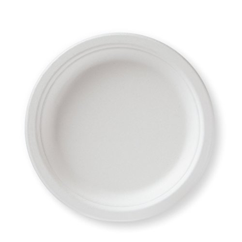 Susty Party 50-Count 100% Compostable Sugar Cane Heavy Duty Dessert Plates, White