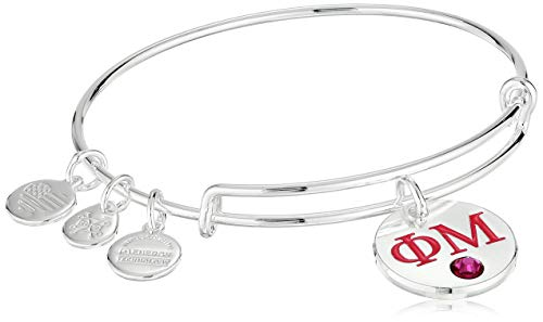 Alex and Ani Women's Color Infusion Phi Mu II EWB Bracelet, Shiny Silver