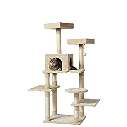 Best Cat Tree for Ragamuffin Cat