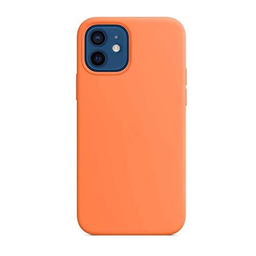 Gel de silice avec étui de protection magnétique MagSafe pour iphone12 12mini promax