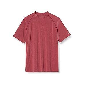 [ヘインズ] Tシャツ 防虫 UVカット 吸汗速乾 デオドラント INSECT SHIELD(R) ショートスリーブTシャツ TCG HM1-T101S メンズ ヘザーレッド XL