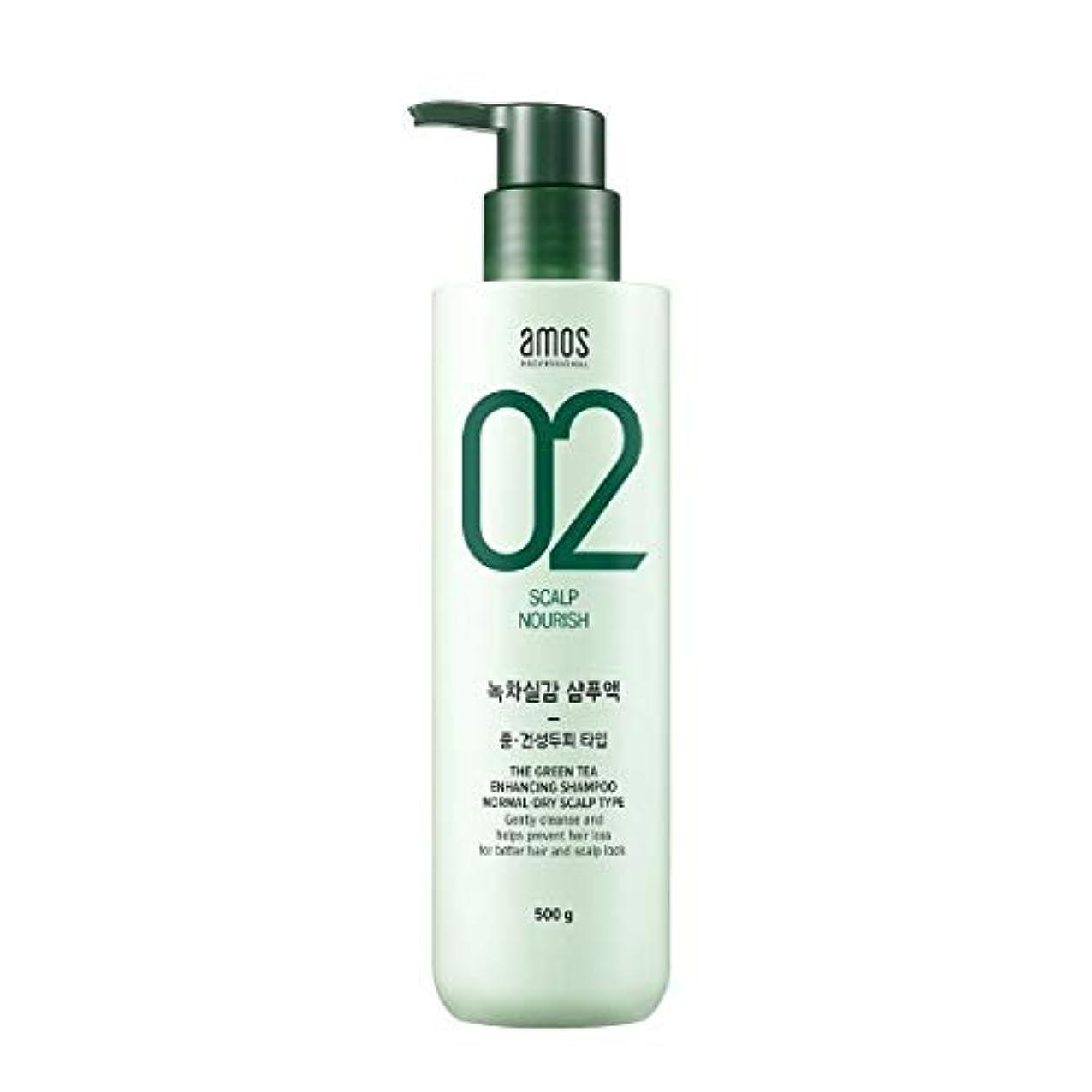 広げるしばしば配管Amos Green Tea Enhancing Shampoo - Normal, Dry 500g / アモス ザ グリーンティー エンハンシング シャンプー # ノーマルドライ スカルプタイプ [並行輸入品]