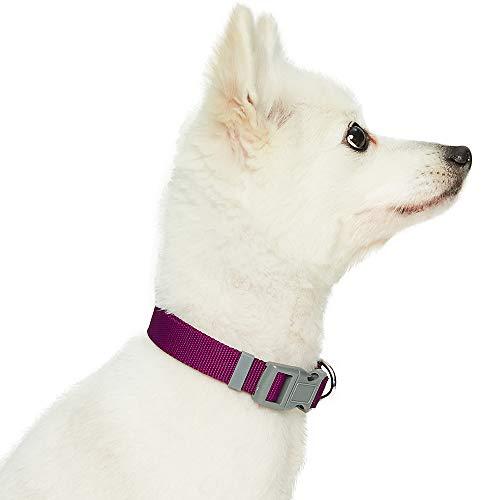 Amazon Brand - Umi. Essential Classic - Collar para Perros S, Cuello 30-40 cm, Collares Ajustables para Perros (Morado)