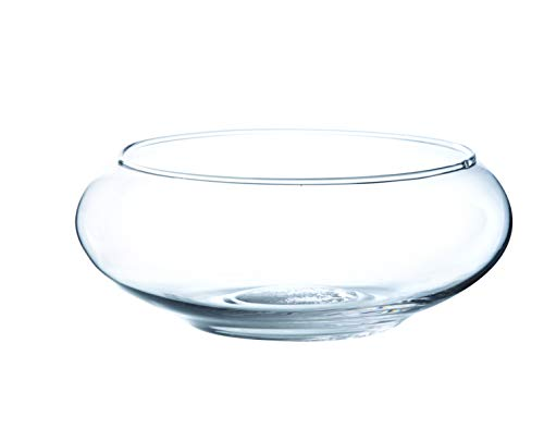 INNA-Glas Coupe en Verre Ronde KENDY, Transparent, 8cm, Ø 19,5cm - Coupelle Ronde - Centre de Table en Verre