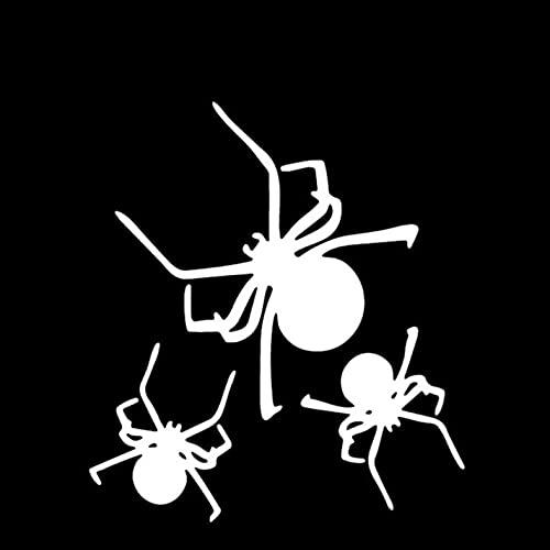 PAOPD Pegatinas de Coche para Adultos, Adolescentes, niños, 13,5 cm * 15,2 cm, arañas, álbum de Recortes para Ordenador portátil, Bicicleta, Nevera, cámara, Libros, calcomanías, 3 Piezas