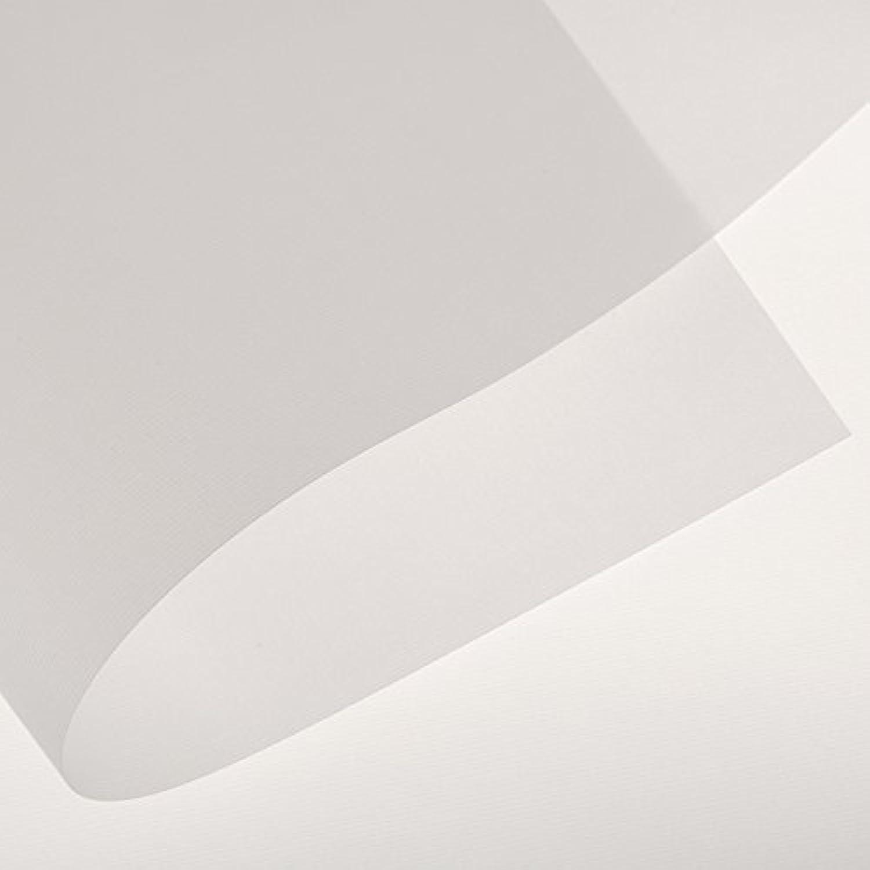 ventas calientes Canson Fundación Rollo Rollo Rollo de Papel de calco, 0, 18  x 20 Yds  minoristas en línea