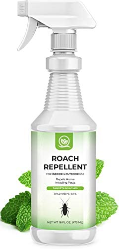 NATURAL OUST Peppermint Oil Roach Repellent Spray Eco Friendly Indoor Outdoor Effective Roach product image