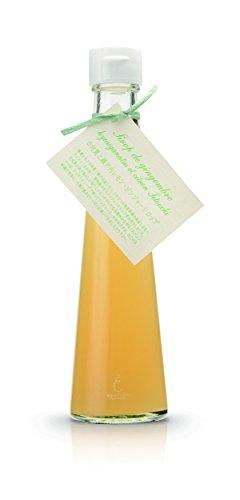 銀座のジンジャー 季節限定 選べる1本ギフトBOX 日向夏と瀬戸内レモン 200ml まとめてお得 3箱 [計600ml](柑橘ジンジャーシロップ・ギフト)