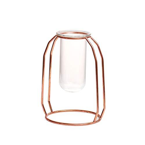 Bibao Blumenvase, Glas, Metallrahmen, durchsichtige Glasvase, Hydrokulturpflanze und Blumen-Dekoration für Wohnzimmer