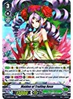 Best maiden of trailing rose Reviews