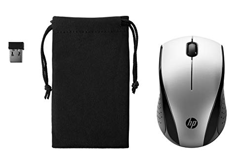 Bolso Plateado  marca HP