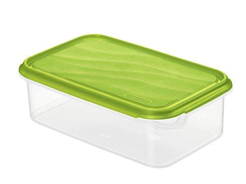 Rotho Rondo Frischhaltedose, Kunststoff (BPA-frei), grün / transparent, 1.5 Liter (24 x 16 x 7,5 cm)