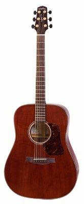 WALDEN Madera CD4041E elektroakustische Gitarre