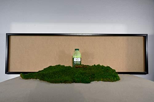 DIY Moosbild 100% Flachmoos, Moosbild selber Machen, Wandbild selber kleben, Do it Yourself Set Moos kleben Wanddeko selbst herstellen (Schwarz, 100x35 cm)