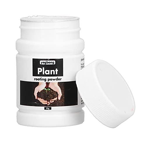 Polvere di Ormone Radicante, Fertilizzante per Radici in Polvere da 50 G per Piante da Frutto Trapiantate di Piante da Frutto Vegetable