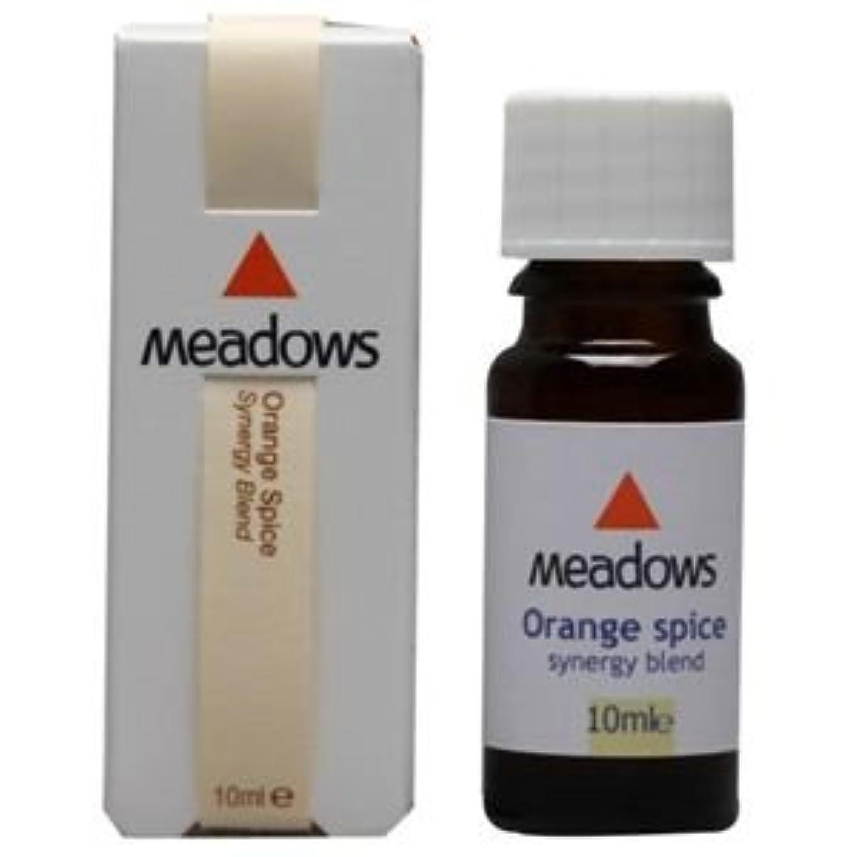 確執解放する口述するメドウズ オレンジスパイス 10ml アロマエッセンス