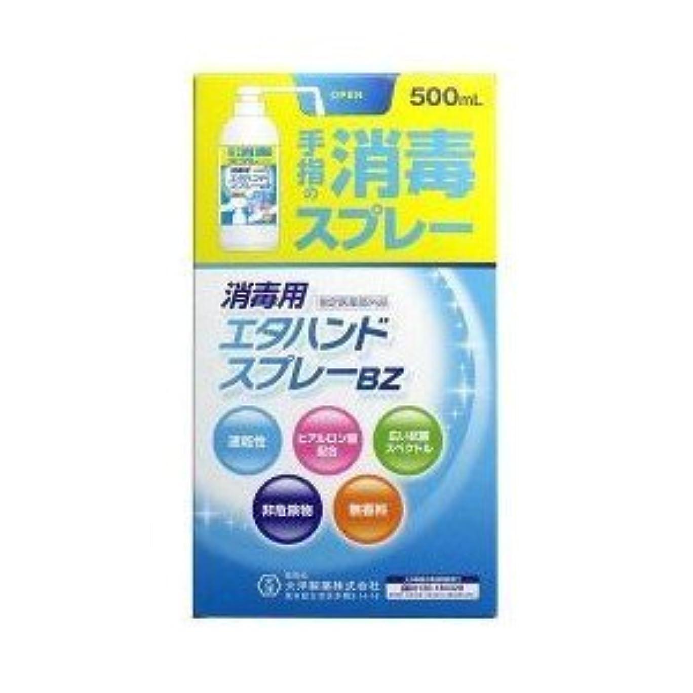 無意味抽象化ドロー(大洋製薬)大洋製薬 消毒用エタハンドスプレーBZ 500ml(医薬部外品)