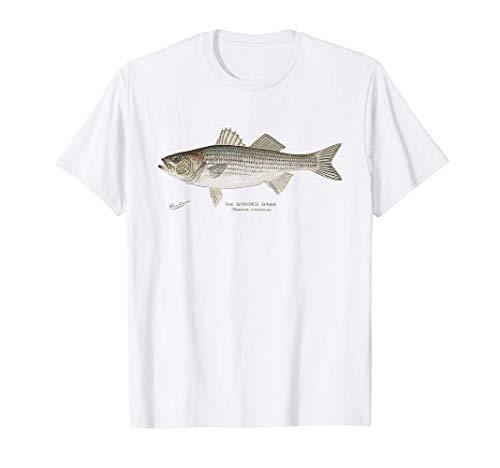 Striped Bass Fishing T-Shirt T-Shirt