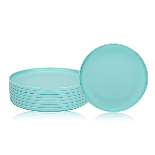 Unbreakable and Reusable 9.75-inch Plastic Dinner Plates, Set of 8 Teal, Microwave/Dishwasher Safe, BPA Free