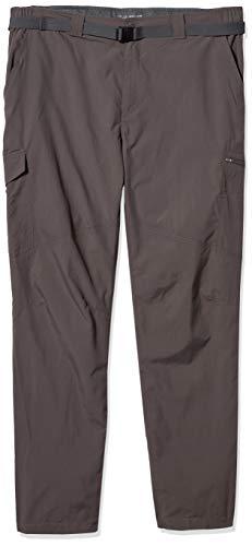 Columbia Men's Men's Silver Ridge Cargo Pant , Mineshaft, 32x32