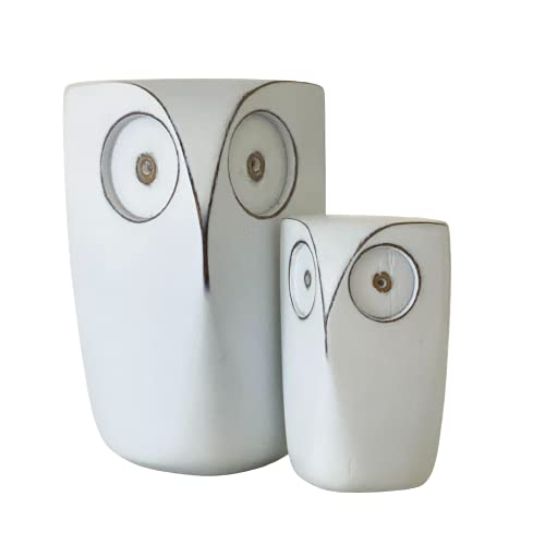 Huey House Wise Owl Decorations for Home - (Set of 2)...