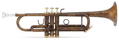 Lechgold TR-16V Bb-Trompete - aus Messing - Edelstahl-Ventile - inkl. Leichtkoffer und Mundstück - säurebehandelt und klarlackiert