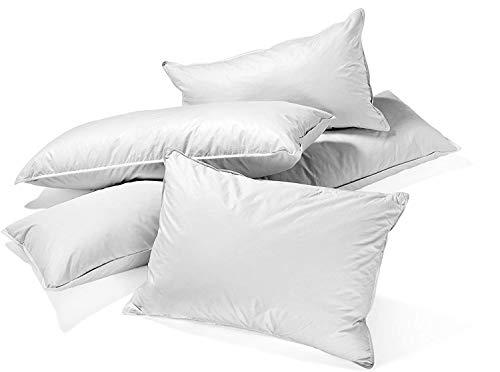 Soft Dream 100% Feder Federn Naturliche Weiss Kopfkissen Kissen - 40x40 40x80 80x80 50x50 (80 x 80 cm, 2500)