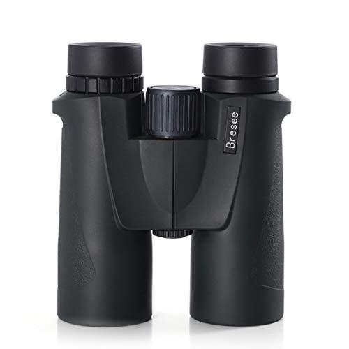 JESSIEKERVIN YY3 Jumelles Haute Puissance 10x42 HD Observation d oiseaux Télescope à Main Portable Utilisation en extérieur (Color : Black)