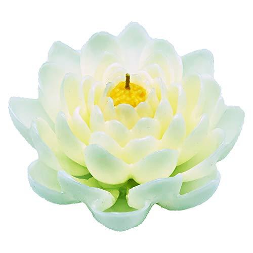 Wohnsinn Candela Fiore di Loto, Candela Ninfea, Candela ad Acqua, Color Bianco, Fatto a Mano in Confezione Regalo Nera, 15x15x7,5cm