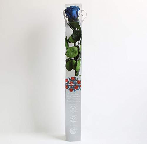 Verdissimo Rosa Preservada en Estuche de Regalo