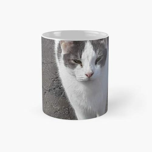Taza clásica de la camiseta del gato lindo   El mejor regalo divertidas tazas de café 11 oz