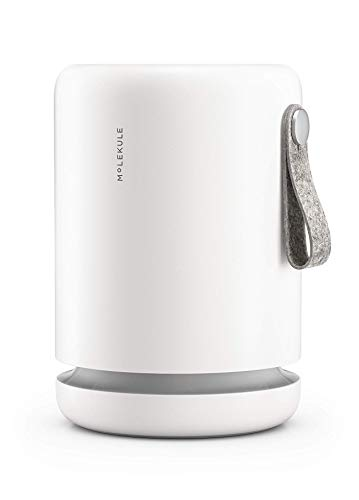 Molekule Mini Air Purifier with PECO Purification Technology, White