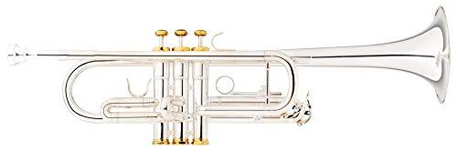 Lechgold CTR-18S C-Trompete - Mundrohr und Schallstück aus Goldmessing - Edelstahl-Ventile - inkl. Leichtkoffer - versilbert