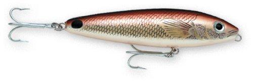 Rapala Saltwater Skitter Walk 11 Fishing lure, 4.375-Inch, Redfish