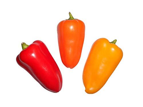 30 graines Mix Snack Tasty Sweet Pepper, par Dream – Graines Store-