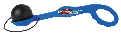 Weaver Leather Stacy Westfall - Herramienta de Entrenamiento para Huevos y Cuchara, Color Azul