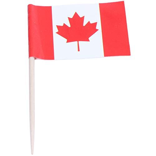 REFURBISHHOUSE Lot Von 50 Stück Zahnstocher Aus Holz Mit Flagge Für Dekor Von Party Fruit Pastry - Kanada
