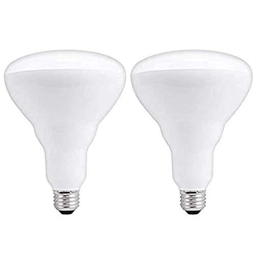 GE Lighting LED 5000K Daylight 13W Dimmable Lightbulbs 85W Equivalent, 2 Bulbs