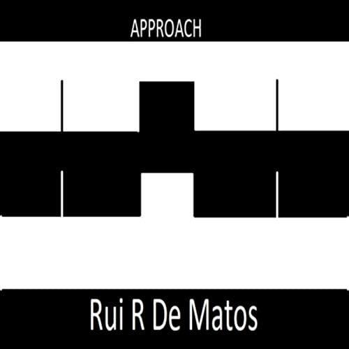 Rui R De Matos