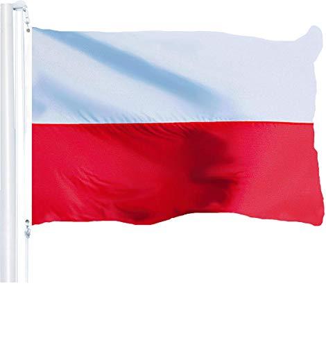 polish flags prime - 9