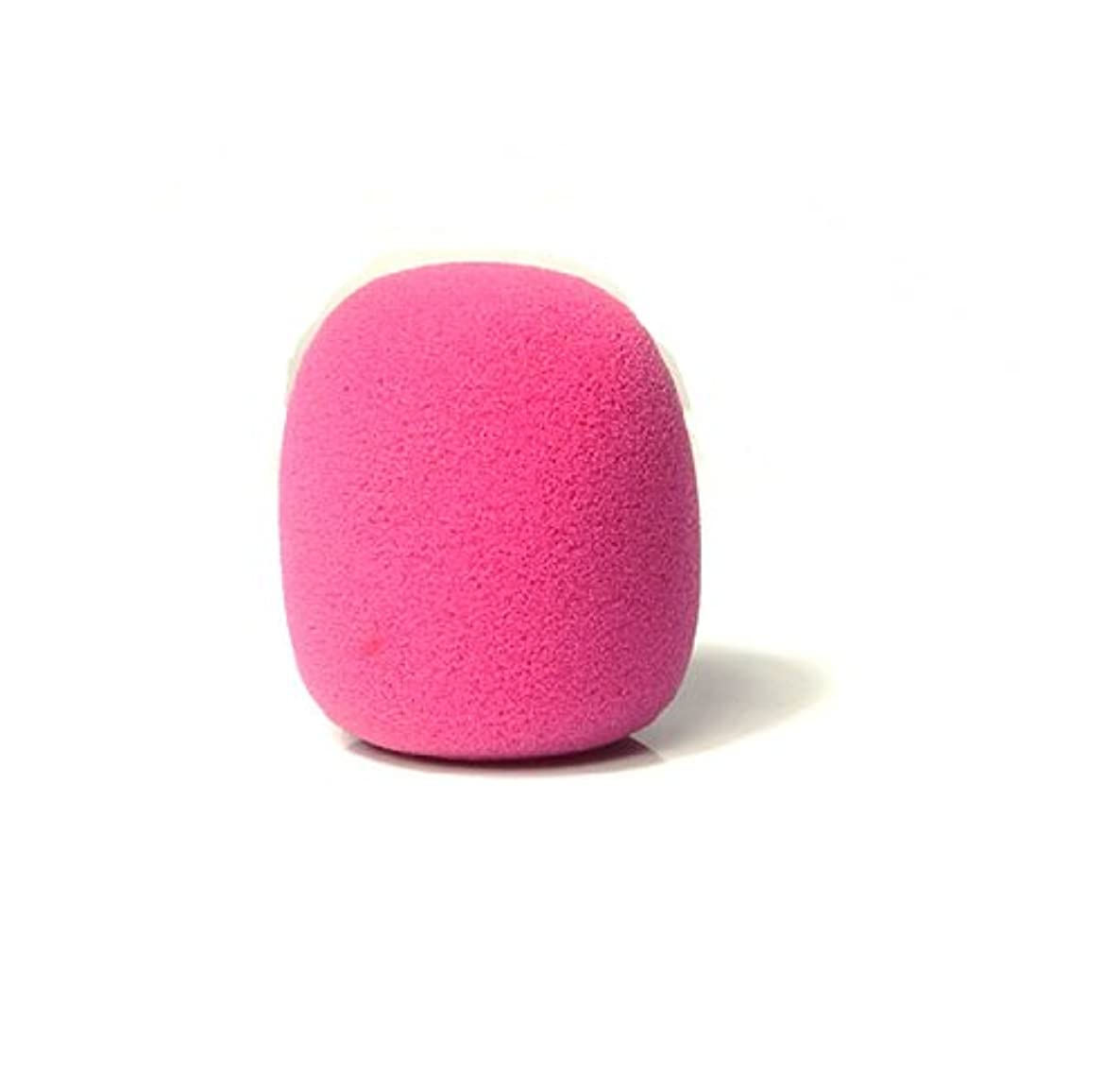 Liroyal Pack of 10 PCS Pink Handheld Stage Microphone Windscreen Foam Cover