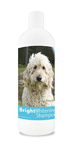Healthy Breeds Dog Bright Whitening Shampoo For Goldendoodle, White- For White, Lighter Fur – Over 150 Breeds – 12 Oz - With Oatmeal For Dry, Itchy, Sensitive, Skin – Moisturizes, Nourishes Coat