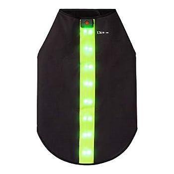 Petit Vert Veste de Sécurité avec Bandes Réfléchissantes LED pour Chiens Safe Gilet de Sécurité LED Blouson Chien Gilet de Haute Visibilité Veste Impermeable Chien Gilet LED Clignotant