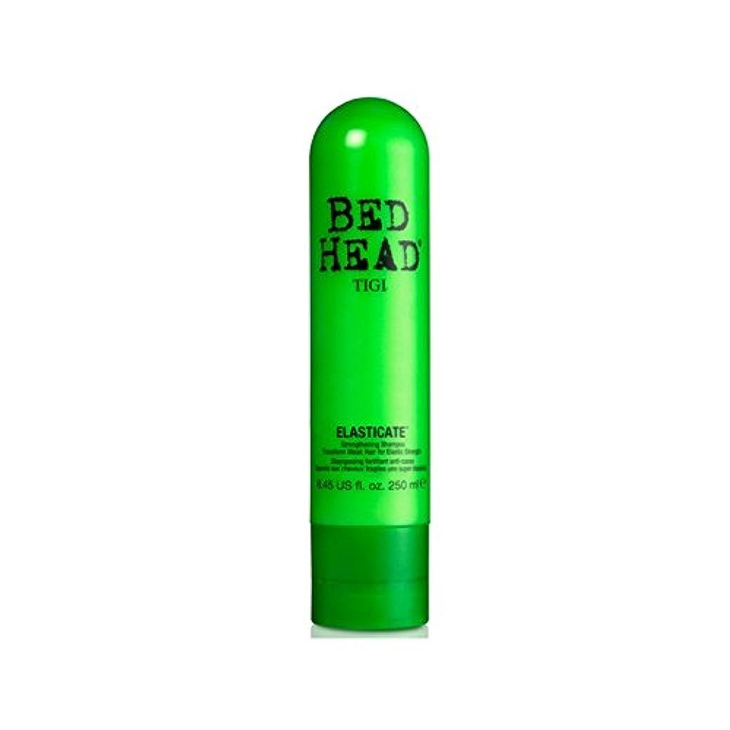 十分です予見する部屋を掃除するTigi Bed Head Elasticate Shampoo (250ml) (Pack of 6) - ティジーベッドヘッドシャンプー(250ミリリットル) x6 [並行輸入品]