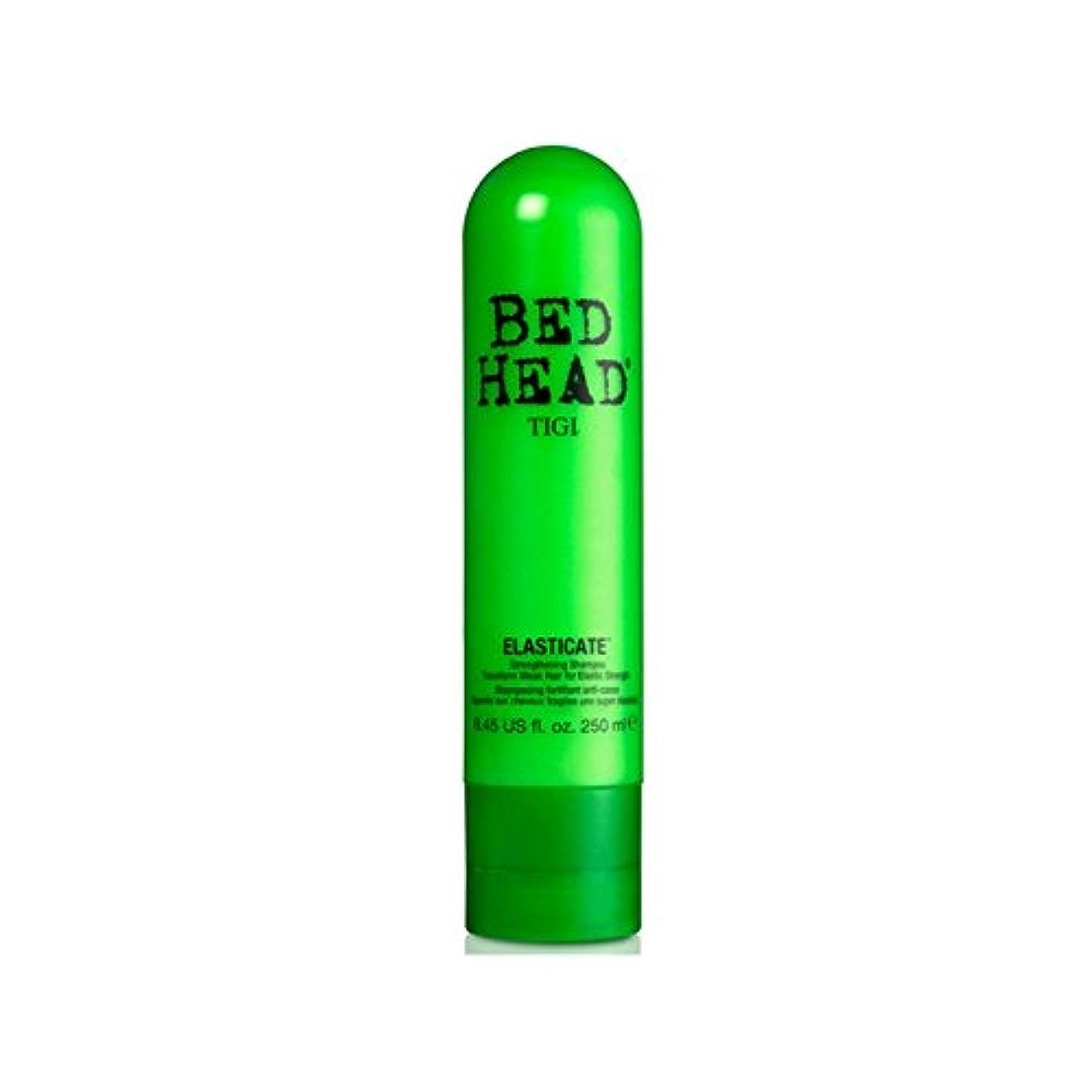 留まる受賞計算するTigi Bed Head Elasticate Shampoo (250ml) (Pack of 6) - ティジーベッドヘッドシャンプー(250ミリリットル) x6 [並行輸入品]