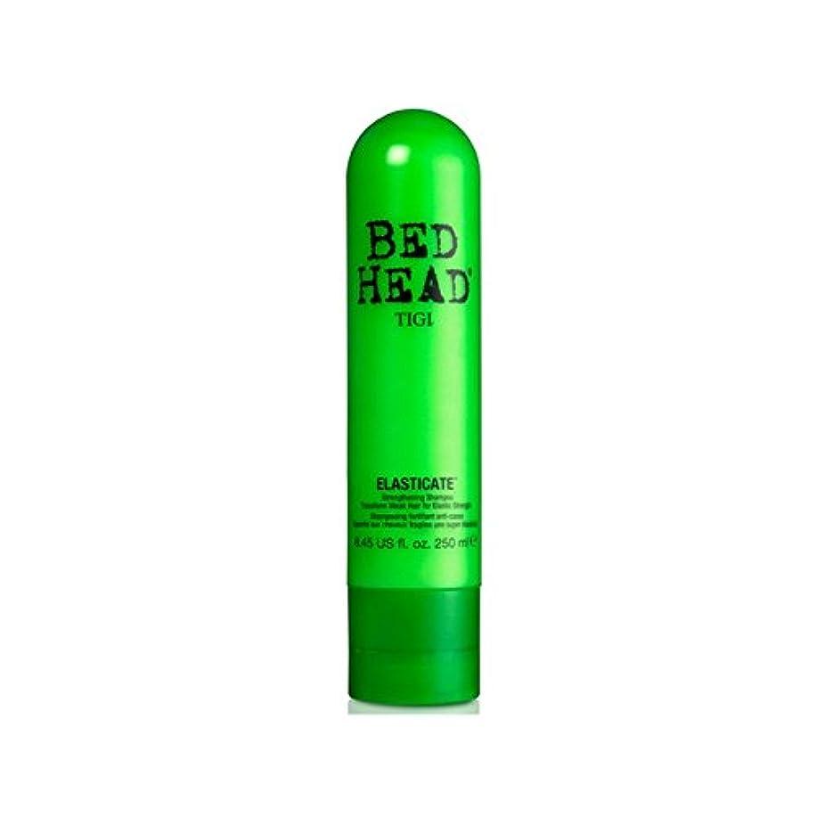 なめる債権者クリスチャンTigi Bed Head Elasticate Shampoo (250ml) - ティジーベッドヘッドシャンプー(250ミリリットル) [並行輸入品]