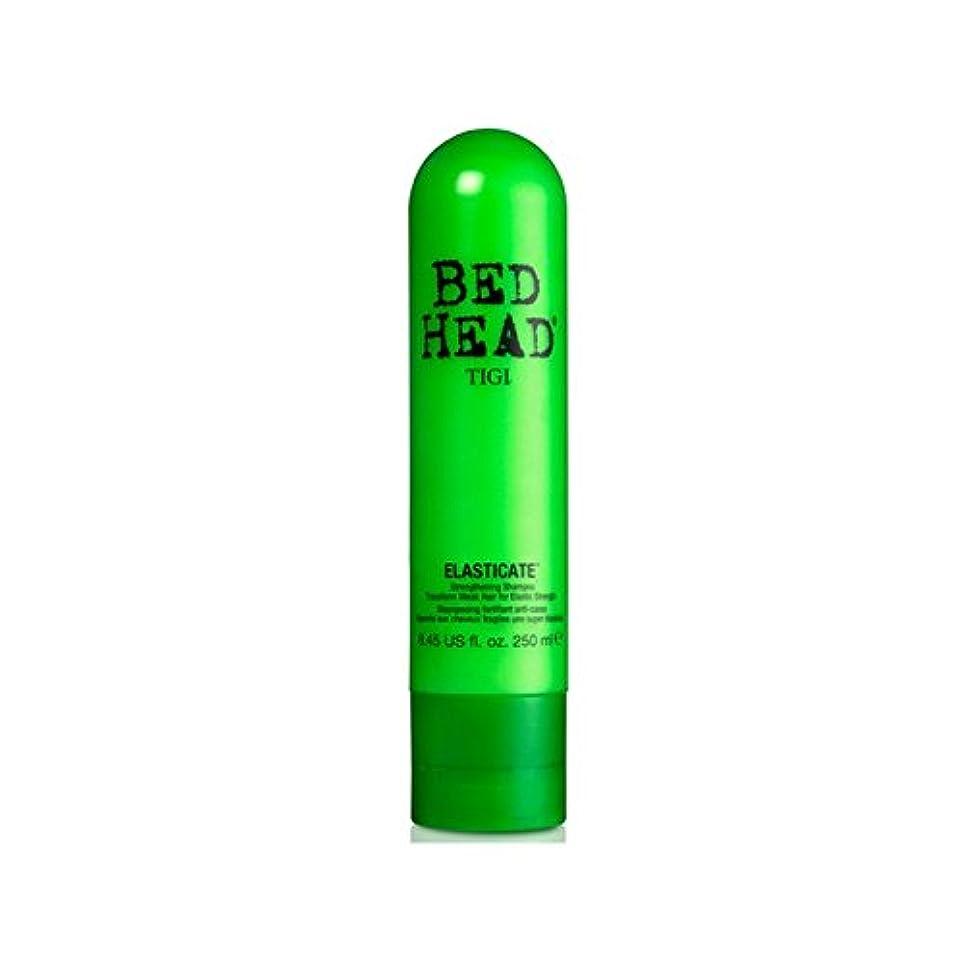 鬼ごっこホース空虚ティジーベッドヘッドシャンプー(250ミリリットル) x2 - Tigi Bed Head Elasticate Shampoo (250ml) (Pack of 2) [並行輸入品]