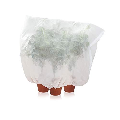 Amazy Schutzhülle für Pflanzen (XL) – Der praktische Kübelpflanzensack aus Vlies schützt empfindliche Topfpflanzen vor Frost, Wind und Niederschlag (240 x 200 cm)
